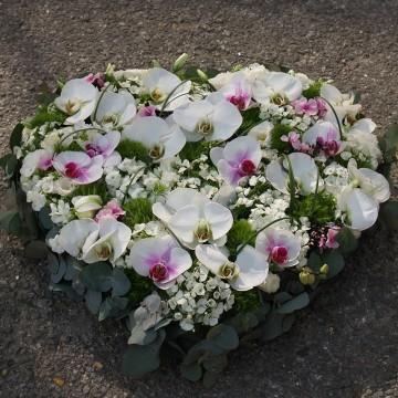 Grand cœur d'orchidées pastel